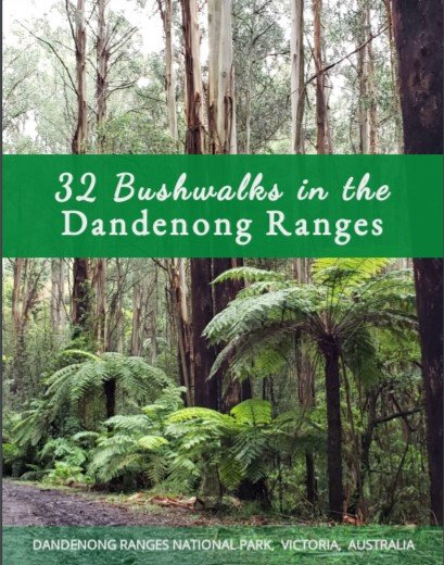 32 Bushwalks in the Dandenong Ranges